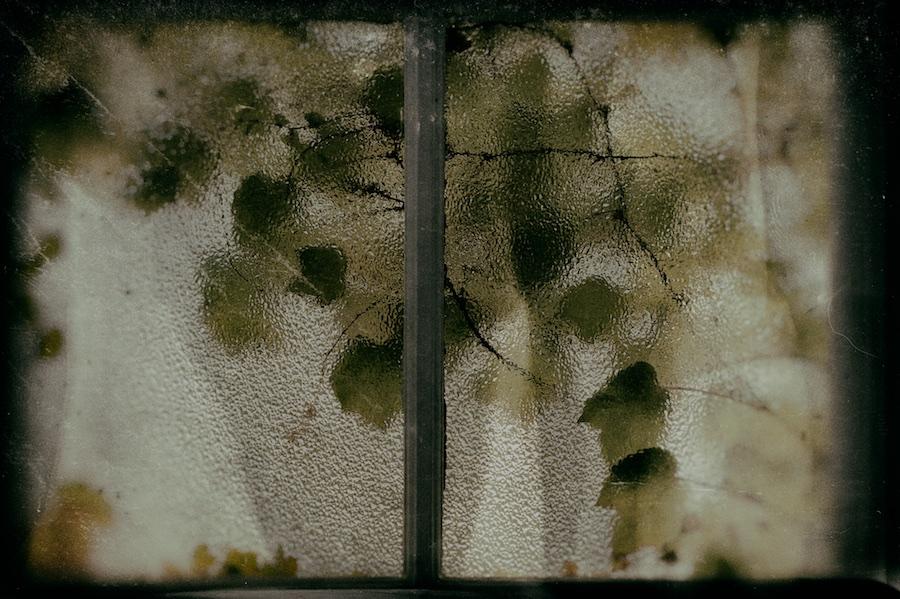 View from a Room 1/3 [Philip Vergeylen]