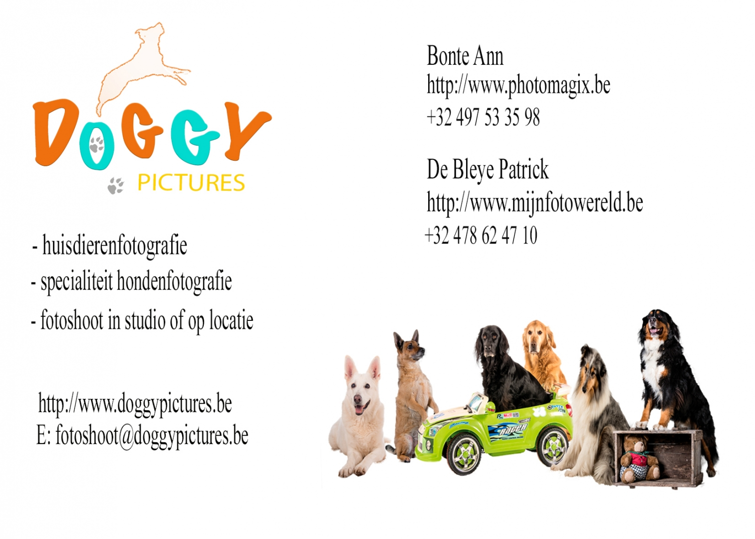 Doggy Pictures © 2018