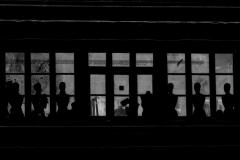 Party © Freddy Nerinckx