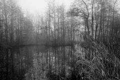 Meersen 2 © Hendrik Braem