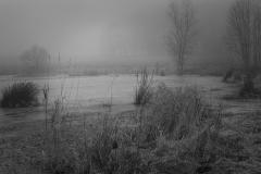 Meersen 3 © Hendrik Braem