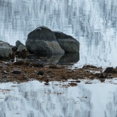 Winter-Zen © Steven Warmoes
